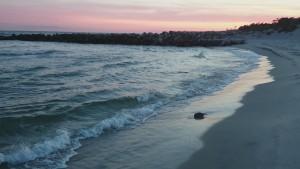 Gör som havet.. Våga...